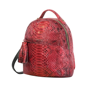 keegs mini backpack python red